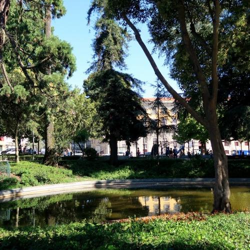Porto Literário: 5 spots que os amantes de livros não podem perder